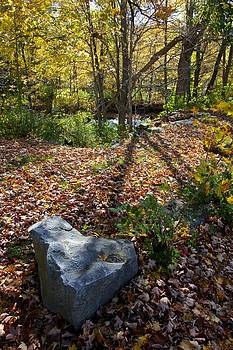 Heart of Stone by Jim Gillen