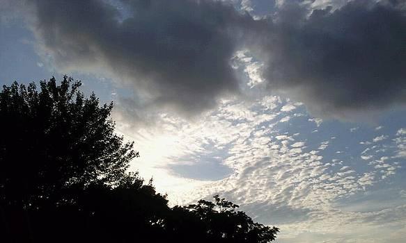 Heart Sky by Dianne Furphy