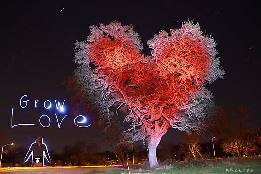 Grow Love by Andrew Nourse