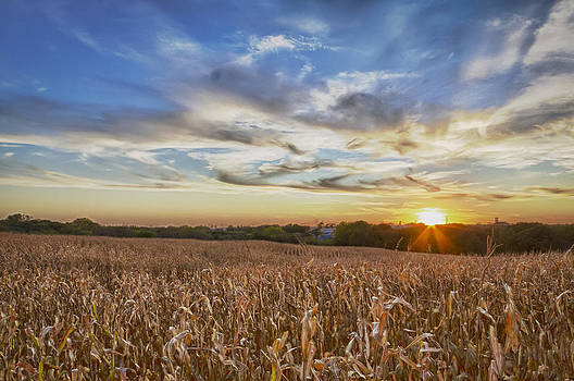 Heartland by Chris Reed