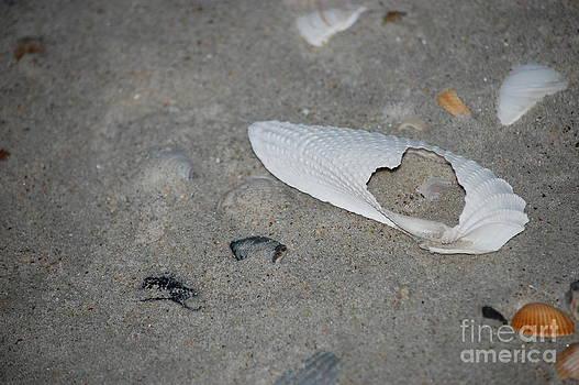 Hearts Desire by Tina Shamay