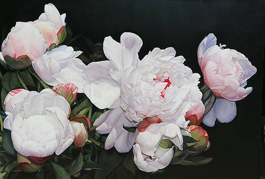 Heather's Peonies by Thomas Darnell