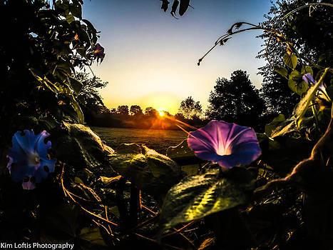 Heavenly sunrise  by Kim Loftis