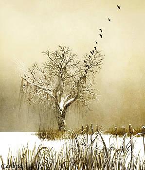 Heavenwards by Carlotta Ceawlin