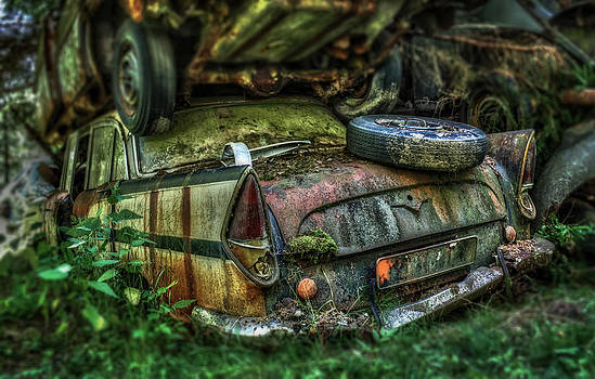 Heavy Load by Barbara Walter