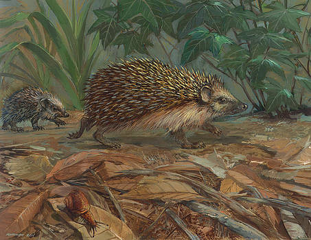Hedgehog by ACE Coinage painting by Michael Rothman