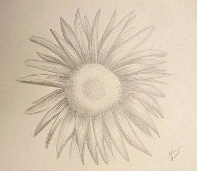 Heirloom Sunflower by Joann Renner