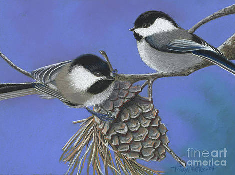 Hello Chickadees by Tracy L Teeter