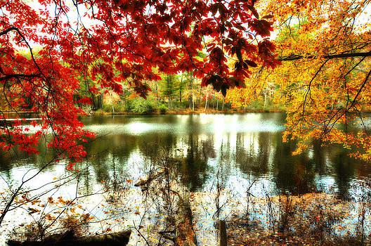 Hello Fall by Heather Bridenstine