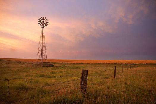 Hello Kansas by Shirley Heier