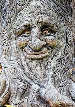 Hello Tree by Linda Xydas