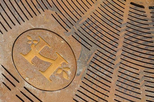 Hendersonville North Carolina Rust Textured Logo by Wesley Corn