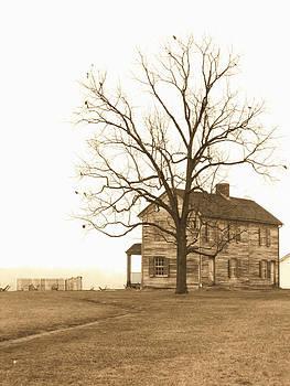 Kevin D Davis - Henry Farm House II