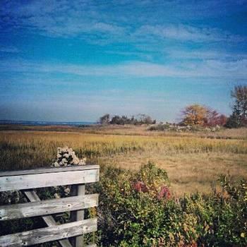 Henry Hudson Trail by April Maisano