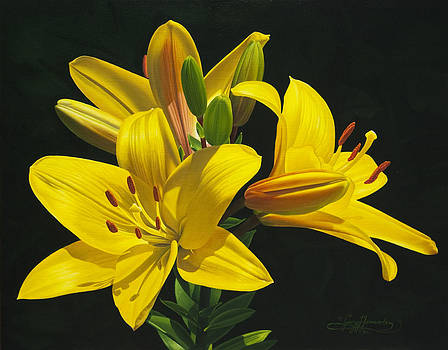 Her Majesty's Lilies by Gary  Hernandez