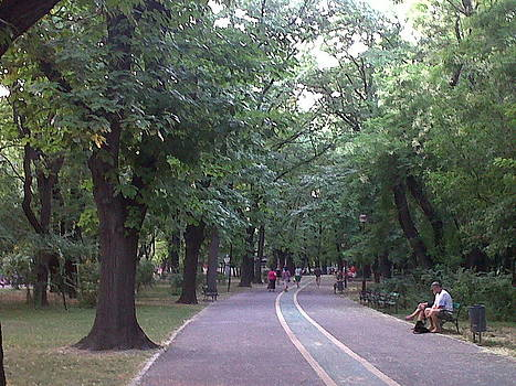 Herastrau Park by Andreea Alecu