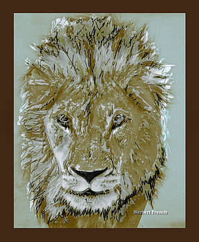 Herbert The Lion by Herbert French