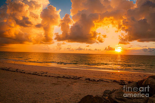 Here Comes the Sun by Nicholas Tancredi