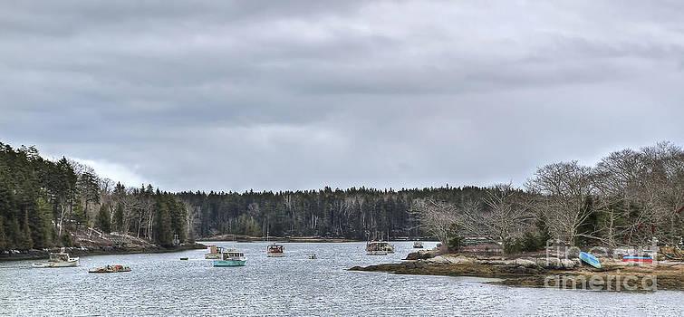Brenda Giasson - Hermit Island Harbor