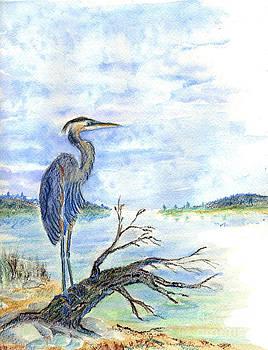Ellen Miffitt - Heron Sentry