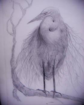 Suzie Hanscom - Heron