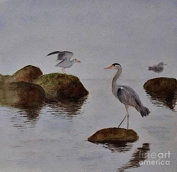 Herons On Water by Marie Lewis
