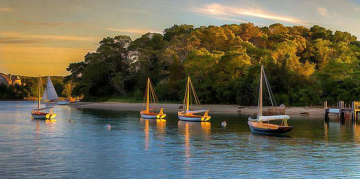 Herreshoffs Quissett Harbor by Michael Petrizzo