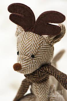 Anne Gilbert - Herringbone Reindeer