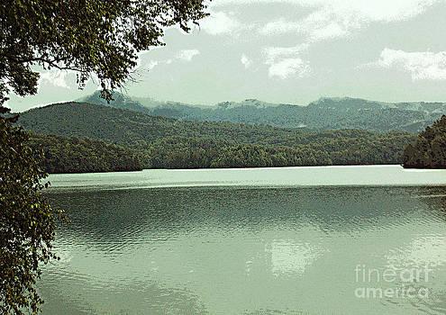 Hiawassee Lake by Annette Allman
