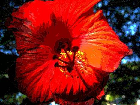 Hibiscus 2 by Mark Malitz
