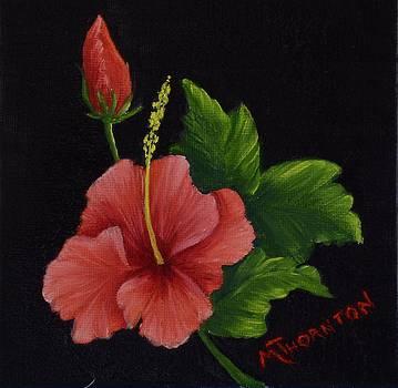 Hibiscus 2 by Marsha Thornton