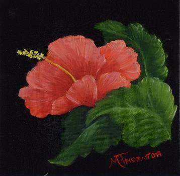 Hibiscus 3 by Marsha Thornton