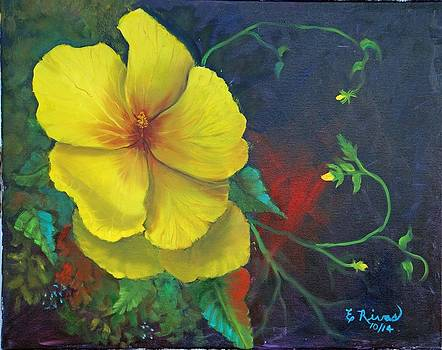 Hibiscus by Esther Rivas