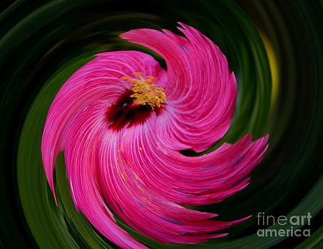 Hibiscus in Motion Series Part 2 by Imani  Morales