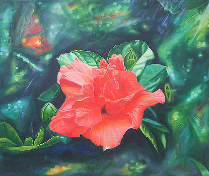 Hibiscus by Leonard Aitken
