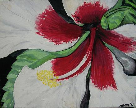 Hibiscus by Michael Henzel