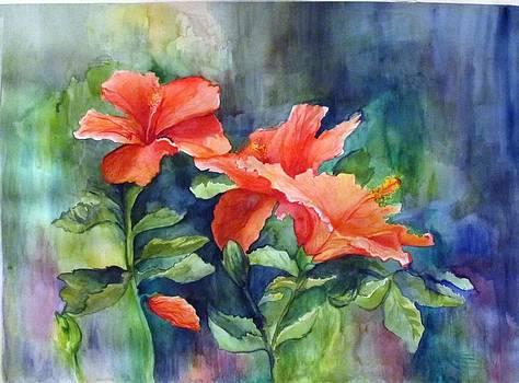 Hibiscus by Nicole Lane