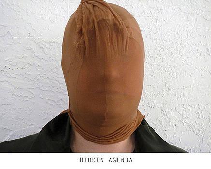 Hidden Agenda by Lorenzo Laiken