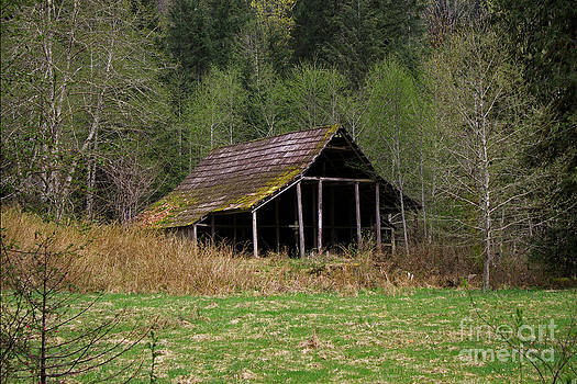 Hidden Barn by Deanna Proffitt