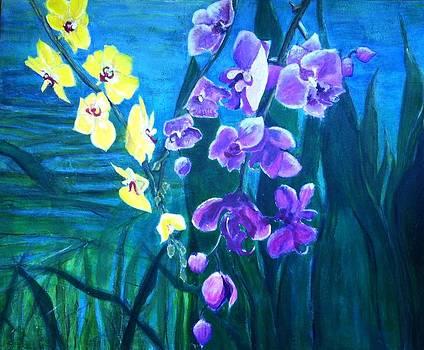 Hidden Beauties by Elizabeth  Bogard