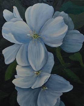 Hidden Beauty by Marsha Thornton