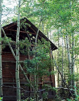 Julie Magers Soulen - Hidden Cabin