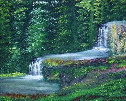 Hidden Falls by John Minarcik