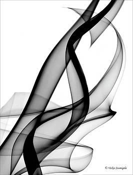 Hidden Heart by Vickie Szumigala