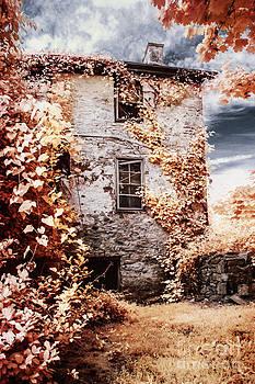 Hidden House by Stacey Granger