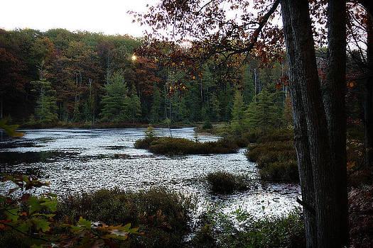 Scott Hovind - Hidden Lake