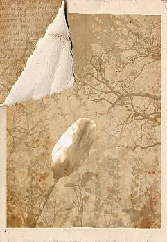 Kristie  Bonnewell - Hidden Letter