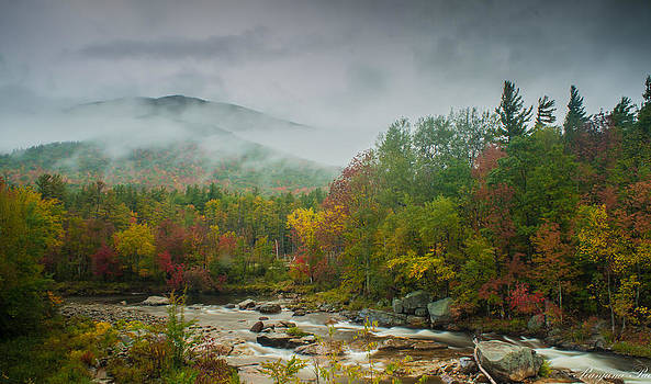 Hidden Mountains in Fall color by Ranjana Pai