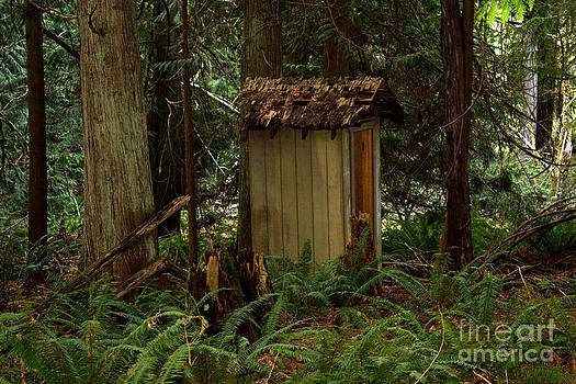 Deanna Proffitt - Hidden Outhouse