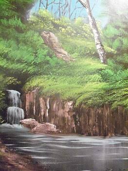 Hidden River Falls by Ricky Haug